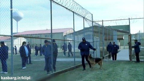 سریال اکشن فرار از زندان | فصل اول قسمت بیستم | دوبله فارسی | جنایی درام جنگی