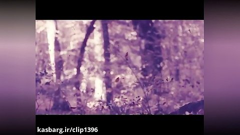 موزیک ویدیو روزبه بمانی به نام چالوس