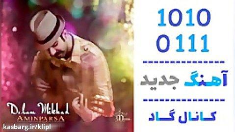 اهنگ امین پارسا به نام دلم میخواد - کانال گاد