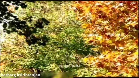 پاییز زنگارنگ