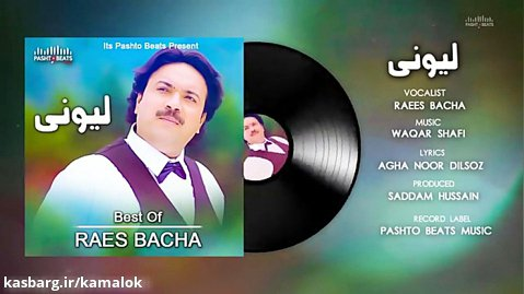 Raees Bacha - Lewanai Lewanai - Pashto Audio Songs 2020