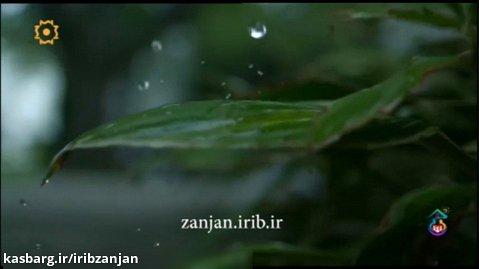 ترانه مثل روزای بارونی | ناصر عبداللهی