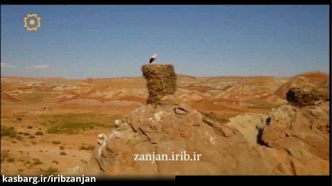انا یوردوم وطنیم زنجانیما قوربان اولوم