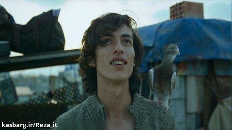 فیلم کبوتر 2018 The Pigeon زیرنویس فارسی